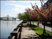 The eastern side of Roosevelt Island as taken from behind the Gristides supermarket